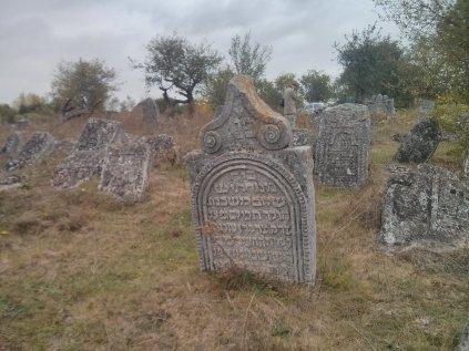 בית הקברות היהודי בווישנייביץ - ב- מדרום לטרנופול